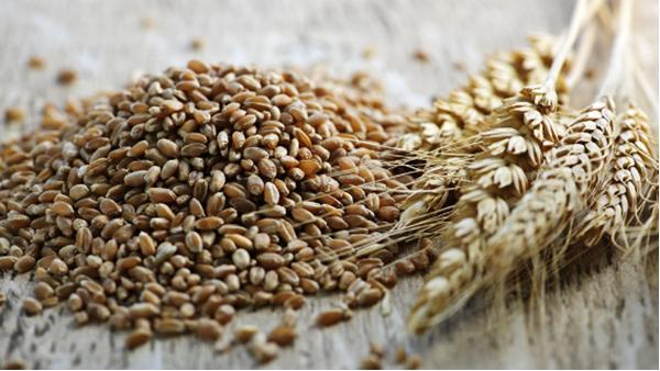 データが証明した、もっとも健康維持に欠かせない食品とは?