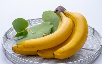 Bimi Smile 有機栽培バナナ
